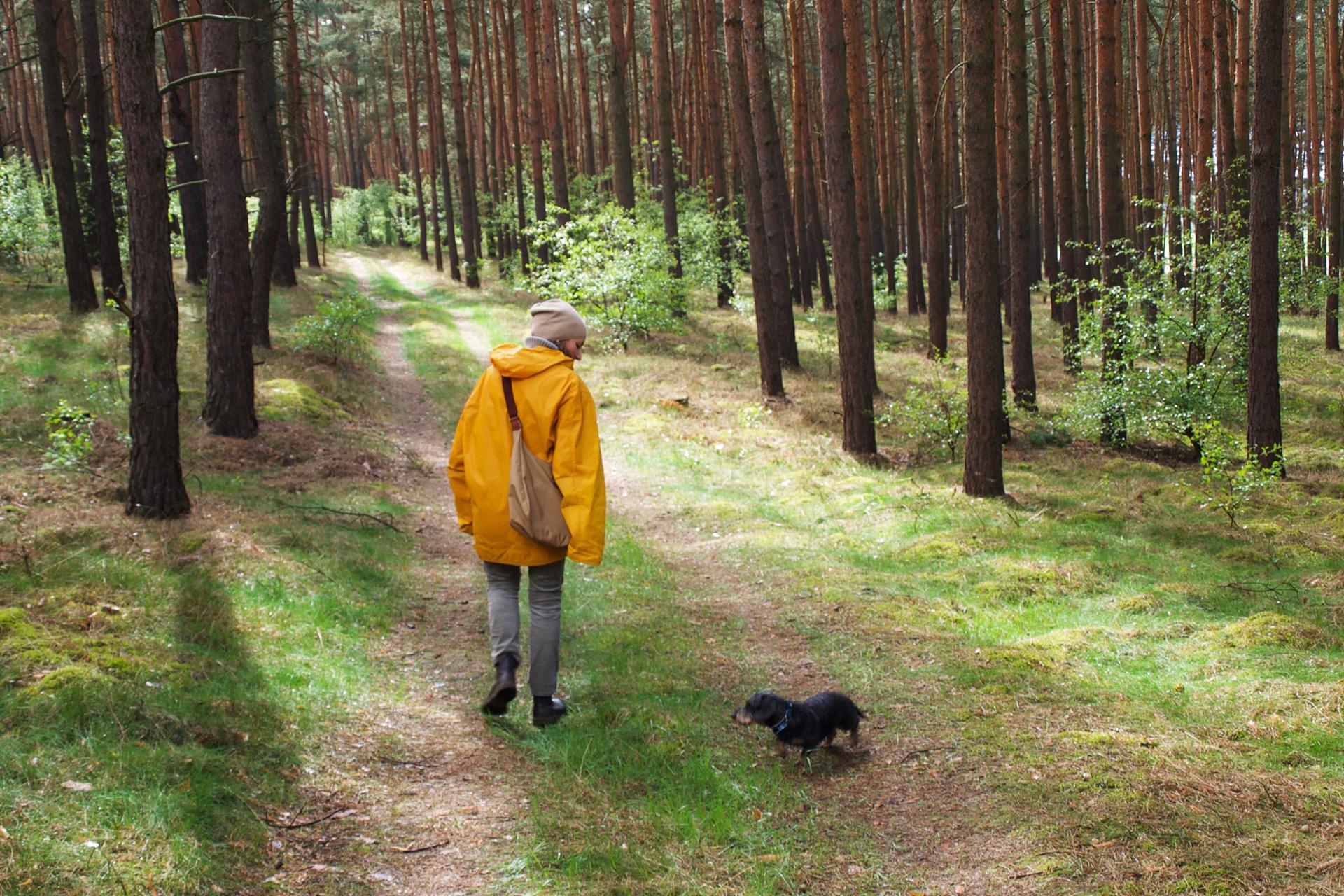 buchstaben...plus macht einen Spaziergang im Marzahner Fenn, ein Tipp von Fred&Otto – Wanderführer für Hunde